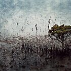 Little Mangrove  by Margi