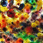 Jellyfish by jbowler