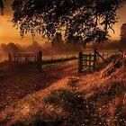 Autumn Sunrise by GaryMcParland
