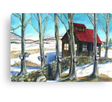 Maple Sugaring in Vermont Canvas Print