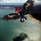 bird boy by carol brandt