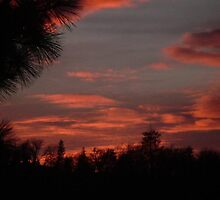 Sunset In The San Bernardino Mountains by Bearie23
