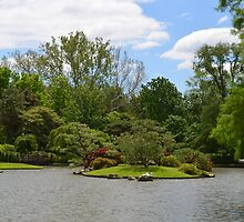 Japanese symbol over the water in garden by Paula Betz
