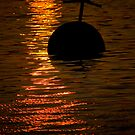 Golden Waters & Buoy by nwexposure
