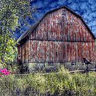 The Heart of the Farm by Donnie Voelker