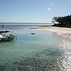 Heron Island. by glenlea
