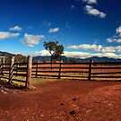 Stockyards by Kym Howard