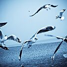 Fly with me...: On featured work: Let-there-be-light-art Group page=5 by Kornrawiee