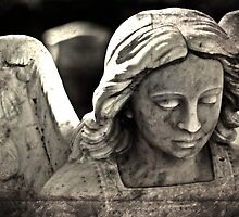 While Angels Weep  by Selina Ryles