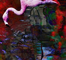 Flamboyant Flamingo by Vanessa Barklay