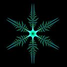 Blue-Green Diatom by Pam Blackstone