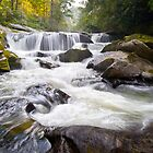 Chattooga Potholes - Chattooga River, Highlands, NC by Dave Allen