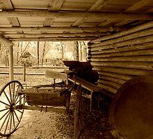 Barn in the Past by Judy Wanamaker