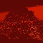 The Red Tree by Omar Dakhane