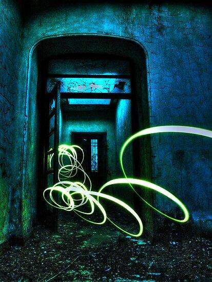 door of light by tom  adamson