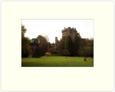 Blarney Castle in Autumn by Jeff Stanford