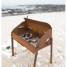 Rocky BBQ at Ytri Tunga (Iceland) by Madeleine Marx-Bentley