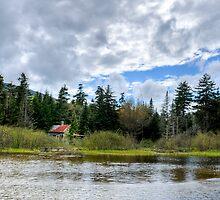 Beaver Dam by Old Shack by Joe Jennelle