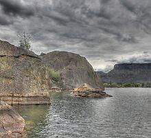 Banks Lake  by Debbie Roelle