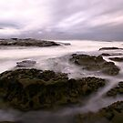 Early Morning at Spoon Bay by John Morton
