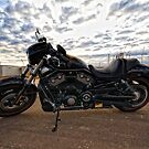 The Harley Davidson - Night Rod Special  by Chris Paddick