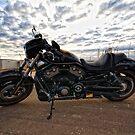 The Harley Davidson - Night Rod Special  by Chris Paddick