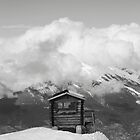 Monochrome Ski Hut by TJHarper93