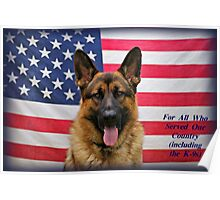 German Shepherd -  U.S.A. Poster