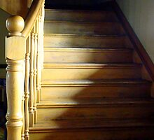 Up The Down Staircase by Susan Bergstrom