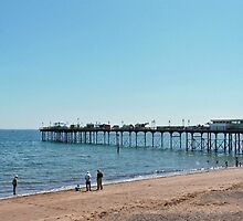 Teignmouth  Pier  Devon UK by lynn carter