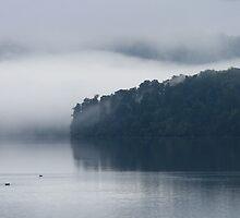 lake mapourika  south westland  nz by rina  thompson