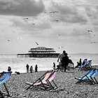 Brighton Seaside by Lisa Williams