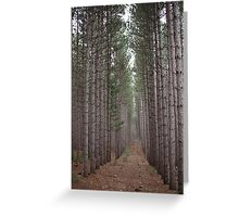 Towering Beauty Greeting Card