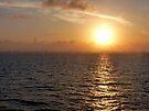 Florida Sunset by Lucinda Walter