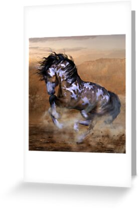 The Wild,The Free Painted Horse by Shanina Conway
