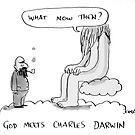 God meets Darwin by Loui  Jover