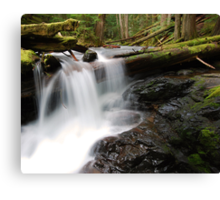 Panther Creek Falls 2 Canvas Print