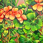 Geraniums by marlene veronique holdsworth