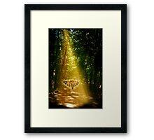 Butterfly in the Light Beam Framed Print