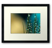 Grass Seed with blue Framed Print