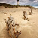 Spurn Lighthouse by Andrew Leighton