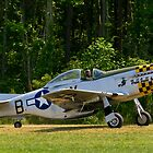 1945 North American P-51D Mustang by Robert Burdick