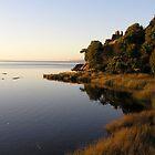 Sarah Island by John Vriesekolk