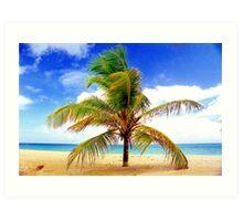 Palm Tree, San Juan, Puerto Rico Art Print