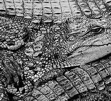 crocs - saigon, vietnam by Kane Horwill