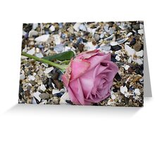 Seashell Rose Greeting Card