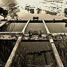 Lune River Treasure by Joel Gogoll