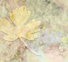 Autumn Fall by Sarah Vernon