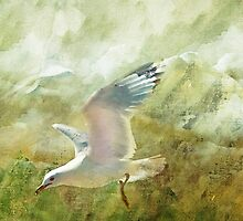 Soar by Elaine  Manley