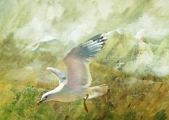 Soar by Elaine  Manley